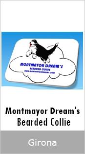Montmayor Dream's