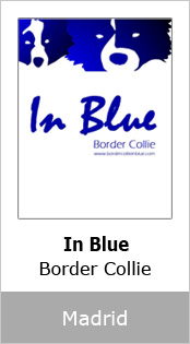 In Blue Border