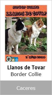 Llanos de Tovar
